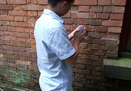 回弹法检测砖强度